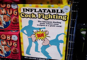 Inflatable cock fighting