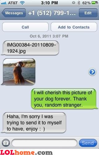 Cherish the dog pic