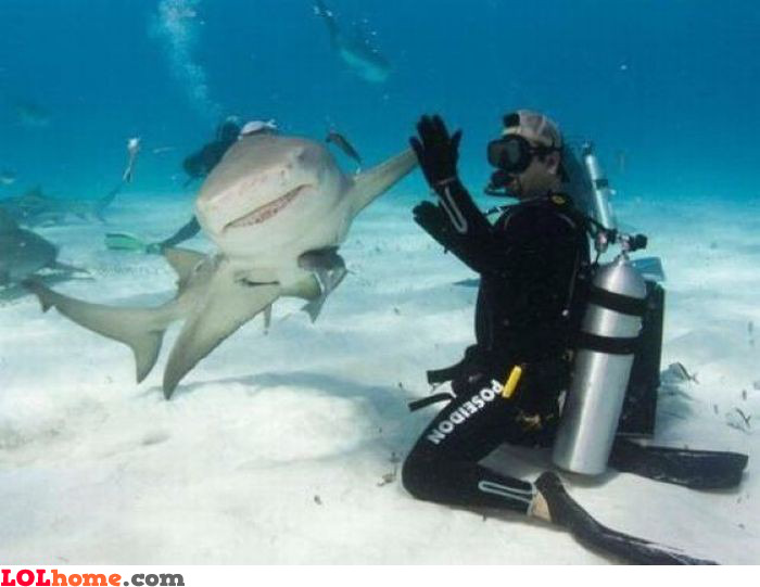 Underwater high five