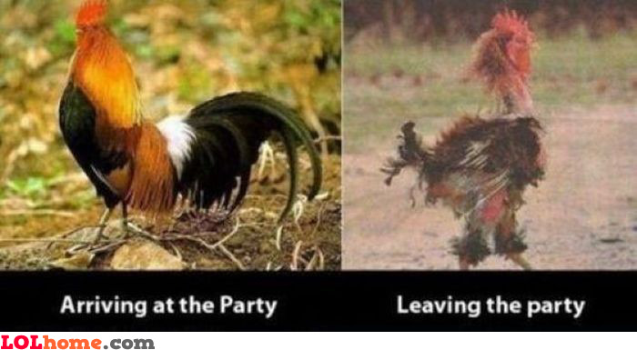 Leaving the party sucks