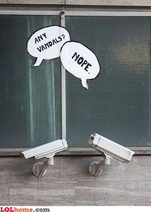 Any vandals?