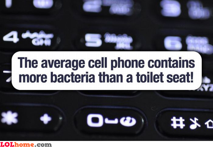 Cell phone bacteria