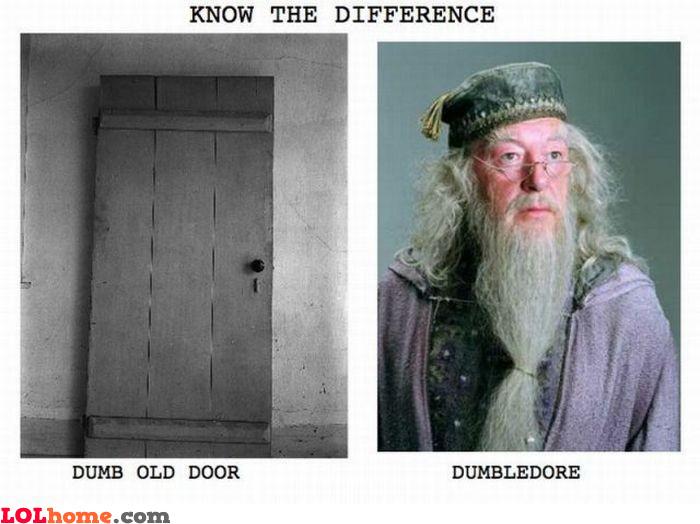 Dumb old door