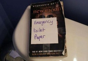 Emergency toilet paper