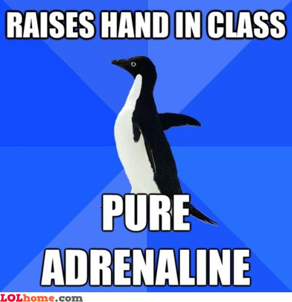 Adrenalin power
