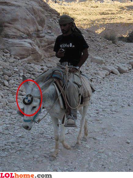 BMW Camel