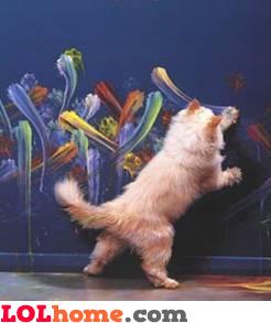 Cat paints