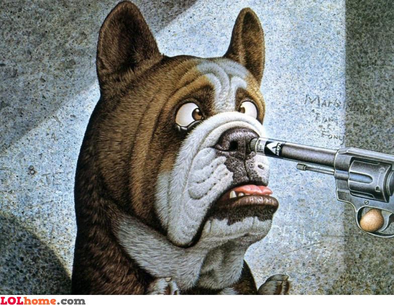 Surrender, dog!