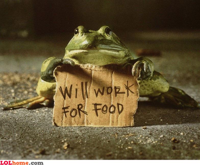 Frog's job