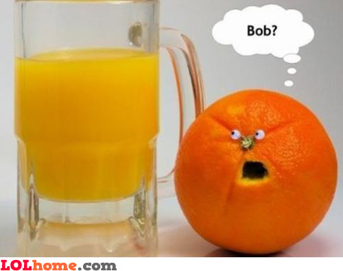 Brother Bob