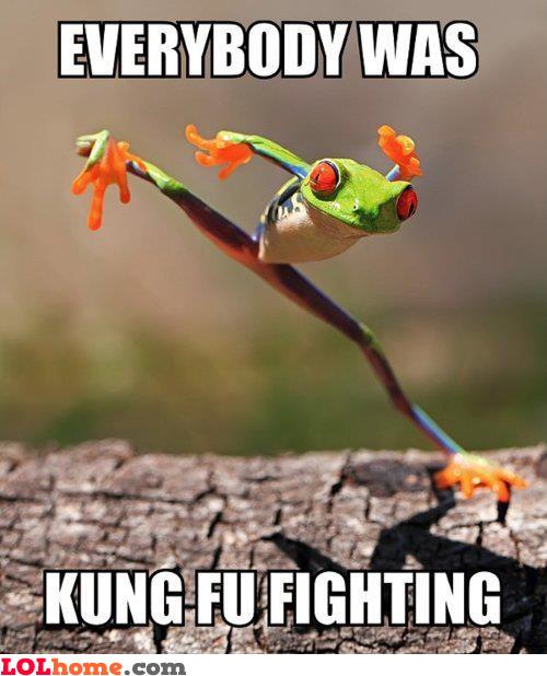 Kung-Fu Fighting!