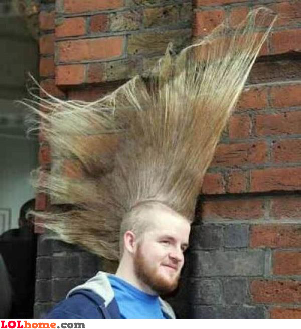 Awesome haircut