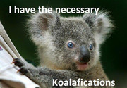Koalifications