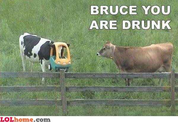 Drunk..