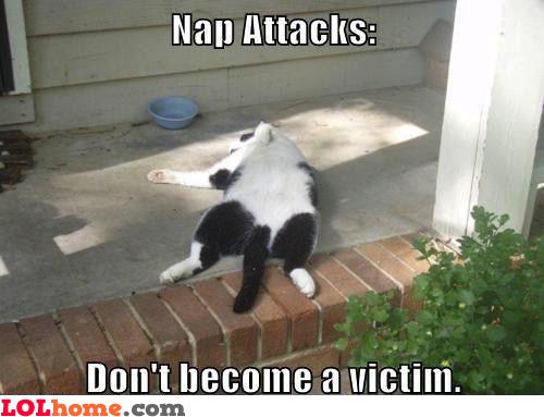 Nap attacks