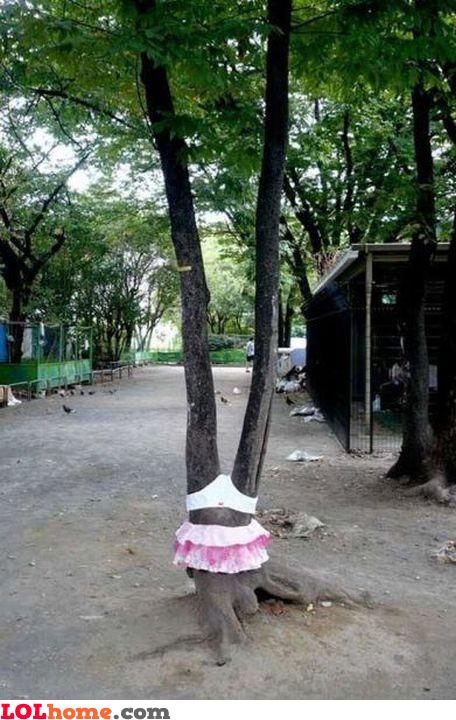 Female tree