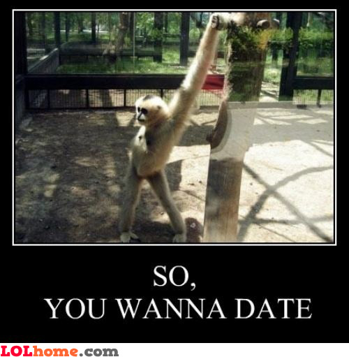 A date with a monkey