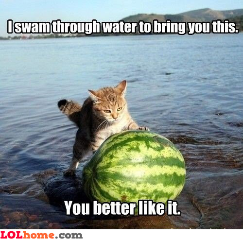 Watermelon for milady