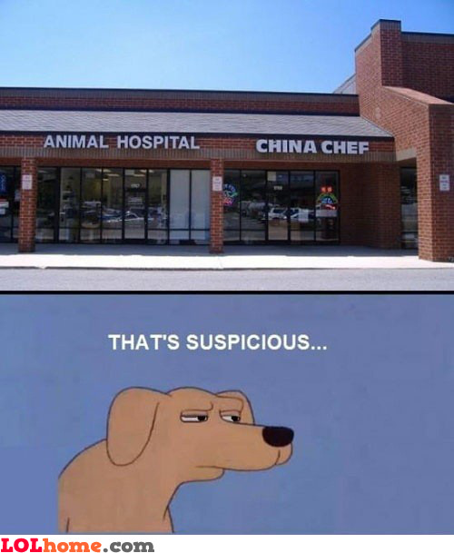 Animal hospital and Chinese chef