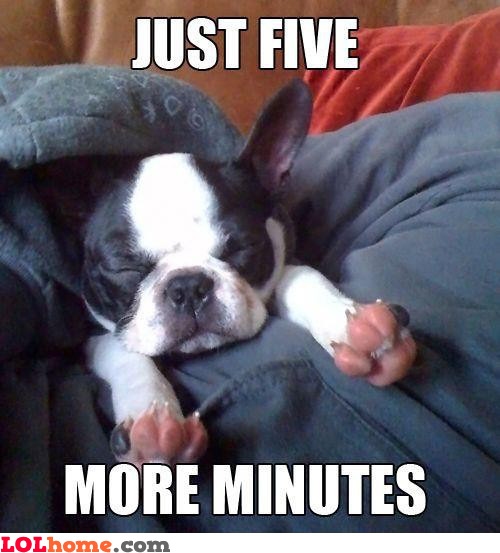 Five more minutes!