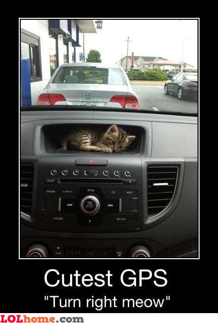 Cutest GPS