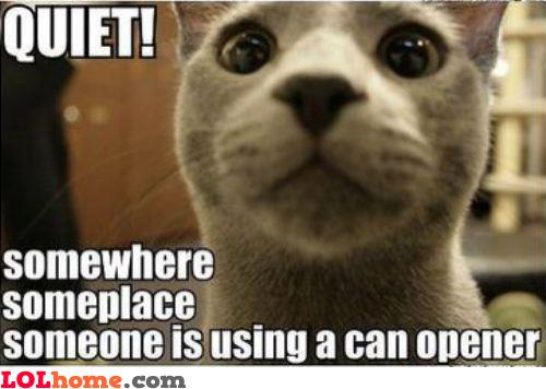 Can Opener I HEAR!