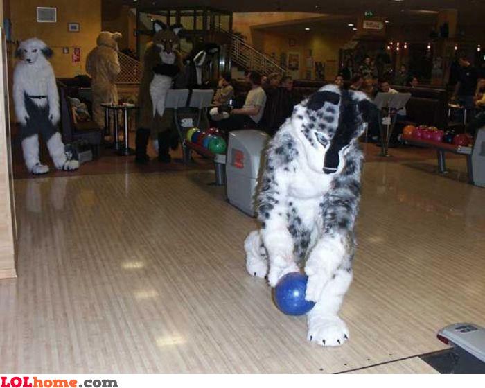 Bowling Animals