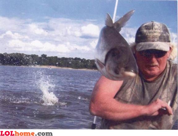 Fish photobombs!