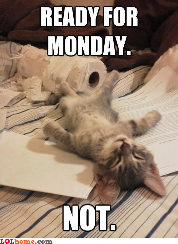 Not Monday, not again...