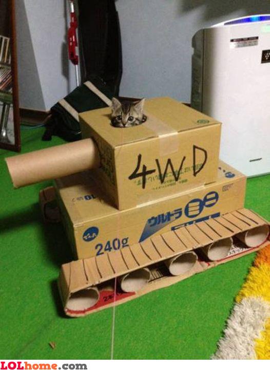 Cat in a Panzer
