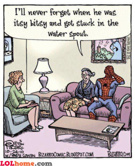 Spidermom