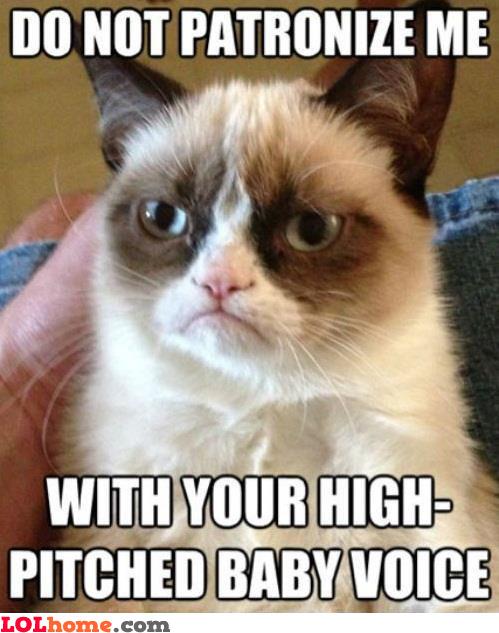 Rough cat