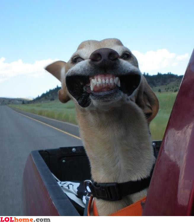 Okay, smile!