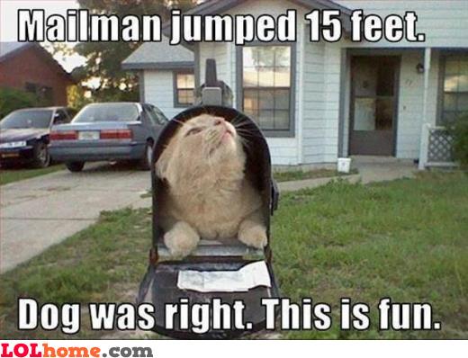 Poor mailman