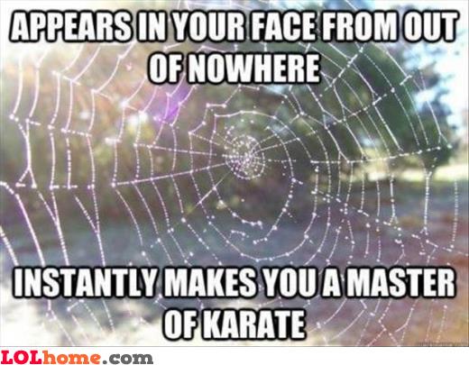 Master of karate