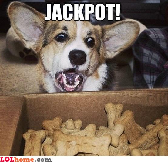 Jaaackpottt!