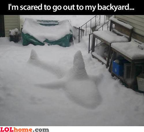 Trouble in my backyard