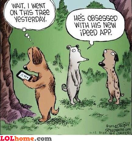 Ipeed App