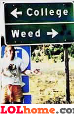 College and Weed