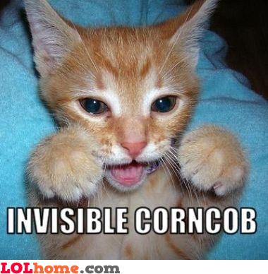 Invisible corncob