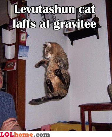 Cooler than gravitation