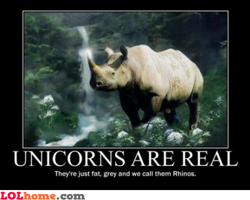 Unicorn fact