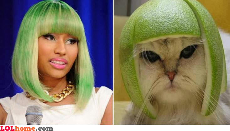 See the resemblance?