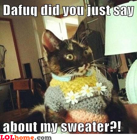 You don't like my sweater?
