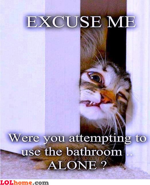 Privacy, huh?
