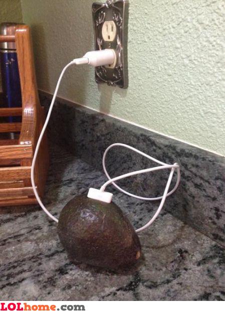 Charging avocado