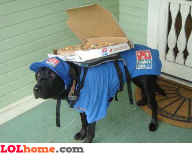 New pizza guy