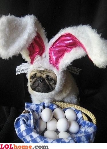 Sad Easter
