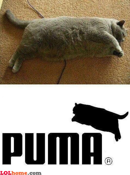 New Puma logo